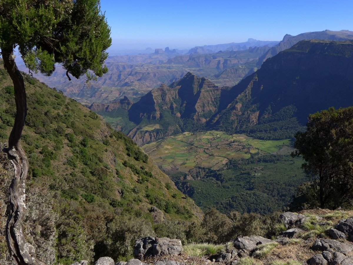 picture description: trekking Simien Mountains with ZenAye Ethiopia Tours, Swiss-African expert in tour operation / photo: Linetta Schneller